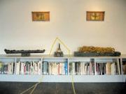 本棚の上に置かれている左が「遺伝子の舟塚」[父型]、右が「遺伝子の舟塚」[母型]
